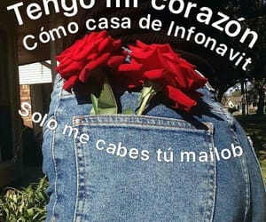 amor, frases, and rosas image