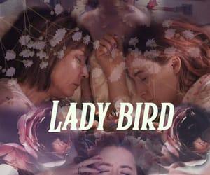 lady bird and funart image