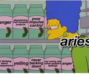 aries, funny, and signs image