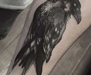 raven and tattoo image