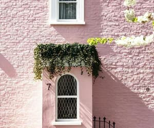 architecture, flowers, and house image
