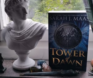 bibliophile, read, and sarah j. maas image
