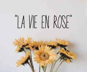 aesthetic, french, and quotes image