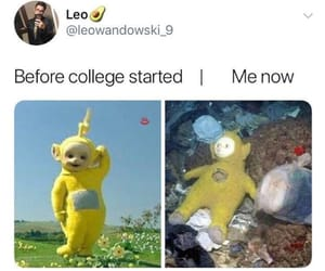 college, funny, and haha image