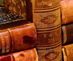 bibliophile, bookaholic, and booknerd image
