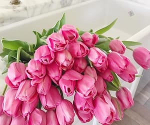tulips, flowers, and pink image