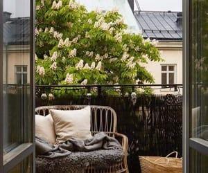 balkon, baum, and kastanie image