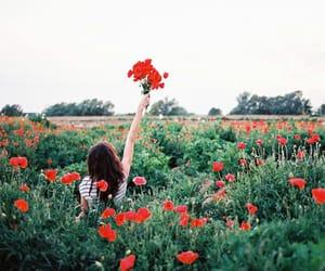 Image by Akira...