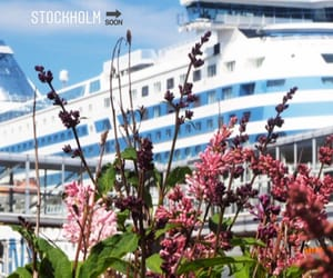 cruise, finland, and finnish image