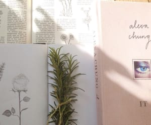 aesthetic, book, and indie image