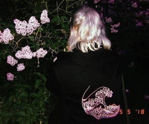 aesthetic, black, and flowers image