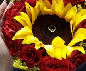 engagement, flower, and mustard image