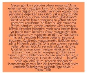 türkçe sözler, arda erel, and yıldız tilbe image