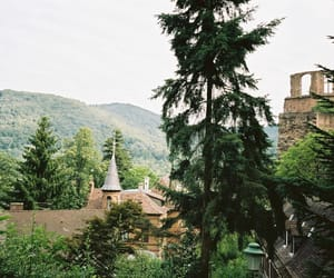 analogue, film, and germany image