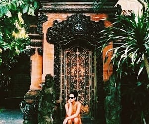 aesthetic, tangerine, and tropical image