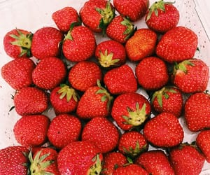 berries, colorful, and food image