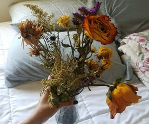 dried flowers, flowers, and garden image