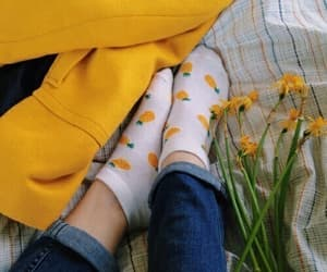 yellow, aesthetic, and flowers image