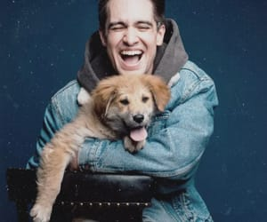 brendon urie, panic! at the disco, and puppy image