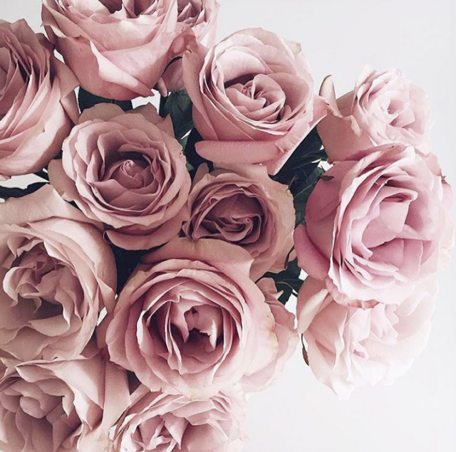 54 Images About Flowers On We Heart It See More About Flowers