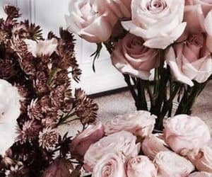 rose, rose gold, and flowers image