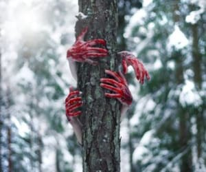 blood, hands, and tree image