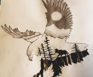 draw, drawing, and eagle image