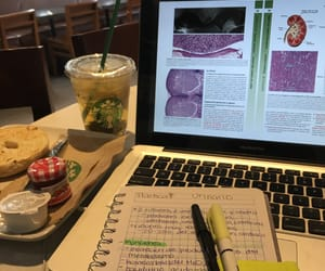 anatomy, books, and breakfast image
