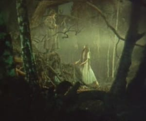 fairy tale, fantasy, and fog image