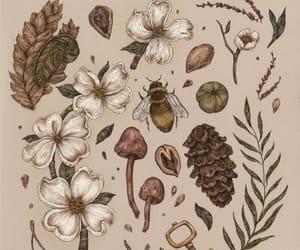 art, bee, and botany image