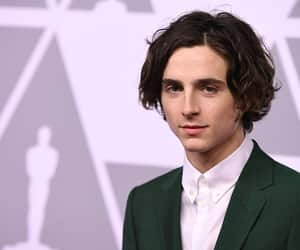 Academy Awards and timothee chalamet image