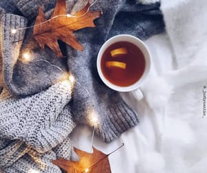 autumn, leaves, and christmas lights image