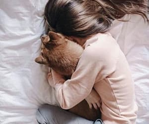 aesthetic, alone, and cat image