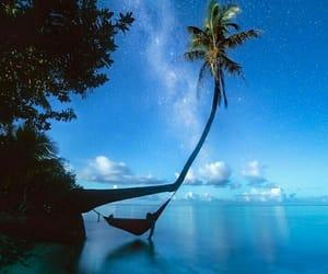 hammock and ocean image