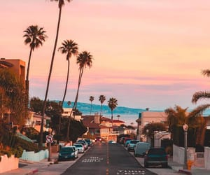 sunset, city, and palms image
