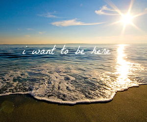beach, sea, and text image