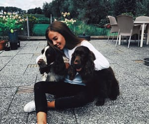 dogs, girl, and happy image