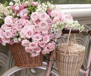 belleza, bicicleta, and flores image