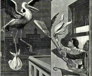 baby and stork image