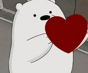 bear, cute, and desenho image
