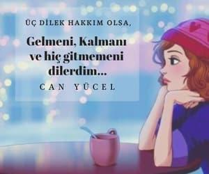 ask, siir, and sözler image