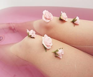 aesthetics, bath, and roses image