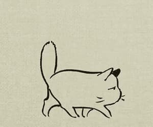 cat, cute, and gif image