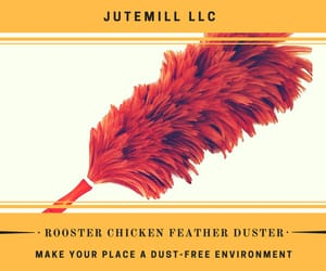 Amazon, chicken feather duster, and clean image
