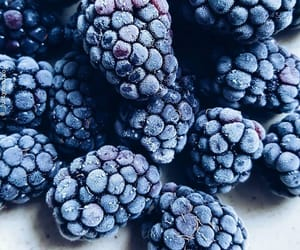 berries, blue, and fruit image