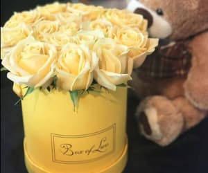 flowers, gifts, and yellow image