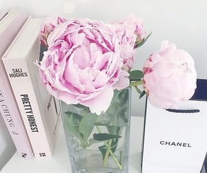 books, peony, and chanel image