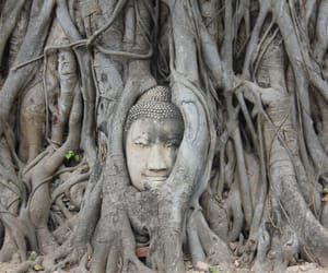 Buddha, photography, and historical place image