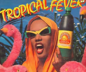grace jones, summer, and tropical image