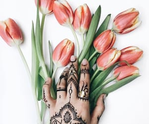 fashion, flowers, and henna image